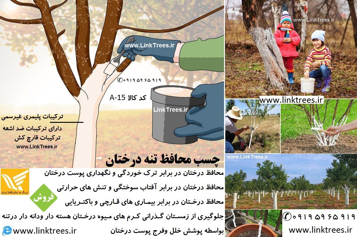 چسب محافظ تنه درختان یا چسب تنه درختان protective tree trunks | ابزار پیوند | فروشگاه ابزار | چسب باغبانی پدیده | چسب باغبانی سمیران | سایت آموزش پیوند درختان www.LinkTrees.ir | فروشگاه پیوند ۹۱۹|۶۵|۵۹|۰۹۱۹