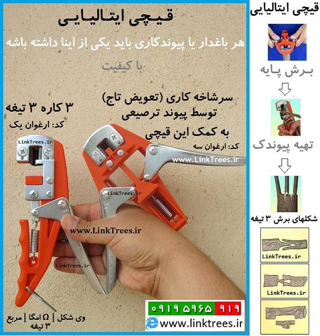 سایت آموزش پیوند درختان www.LinkTrees.ir | فروش قیچی پیوند زنی | قیچی پیوند ایتالیایی | قیچی پیوند ارغوان |قیچی پیوند 3 کاره|قیچی پیوند 3 تیغه | وی شکل V | امگا Ω | مربع ( پیوند وصله ای) یکی از پیوند های جوانه | Italian Grafting Tools Selling Scissors | دستگاه پیوند جهت تعویض تاج درختان