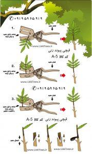 قیچی همه کاره | قیچی پیوند J60 تایوان | سایت فروش ابزار پیوند و باغبانی | قیچی پیوند چند منظوره | ابزار پیوند | وسایل باغبانی و فضای سبز | بخش فروش قیچی پیوند زنی درختان و گیاهان | قیچی پیوند چند منظوره | قیچی پیوند با قابلیت انجام شش نوع پیوند متفاوت | قیچی تایوانی | قیچی بهکو | بهکو | بهکو پیوند | گاردن تولز | قیچی دسته قرمز